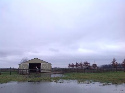 西郊的雨天下棋回家的路上
